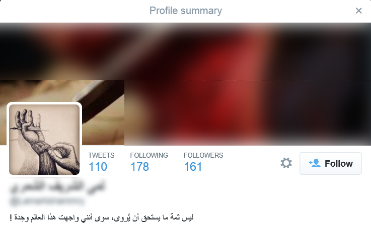 Twitter Profile of Female Canadian ISIS Supporter